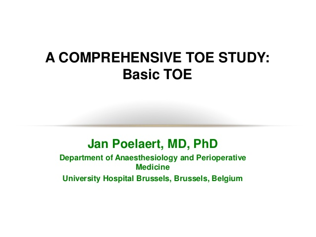 A COMPREHENSIVE TOE STUDY: Basic TOE