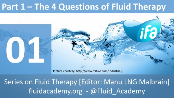 The four questions of fluid therapy (Part 1.4.)